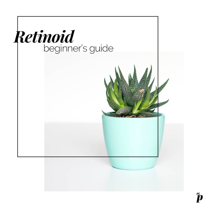 Retinoid- A beginner's guide, things you should know before buying and using a Retinoid or Retinol